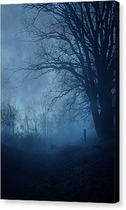 Silence Canvas Print by Cambion Art