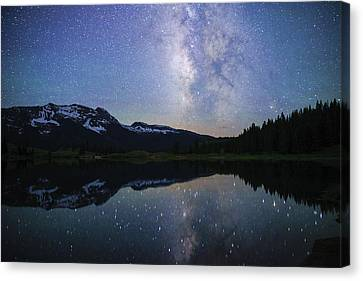 Silent Kingdom Canvas Print by Daniel Lowe