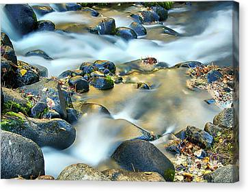 Silky Water Canvas Print by Maria Coulson