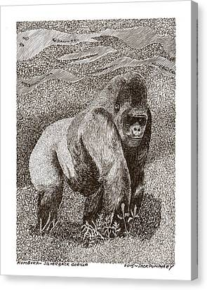 Silver Back Gorilla In The Mist Canvas Print by Jack Pumphrey