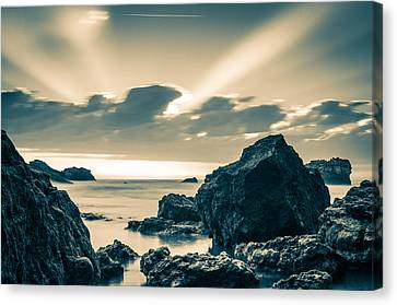 Canvas Print featuring the photograph Silver Moment by Thierry Bouriat