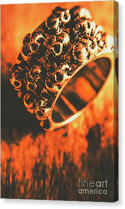 Silver Skulls Pirate Ring Canvas Print by Jorgo Photography - Wall Art Gallery