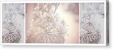Silver Vintage Dream. Triptych Canvas Print by Jenny Rainbow