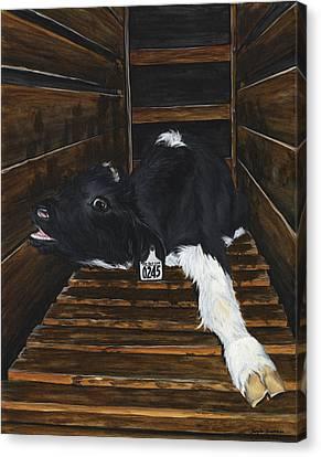 Simon Canvas Print by Twyla Francois