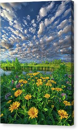 Sing For The Day Canvas Print by Phil Koch