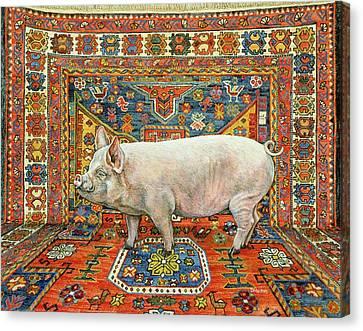 Singleton Carpet Pig Canvas Print by Ditz