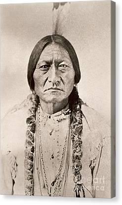 Sitting Bull  Canvas Print by David Frances Barry