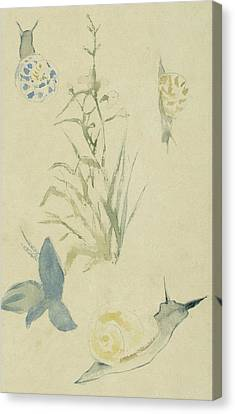 Sketches Of Snails, Flowering Plant Canvas Print by Edouard Manet