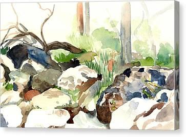 Skipping Rocks Canvas Print by Linda Berkowitz