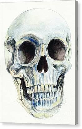 Skull Canvas Print by Morgan Fitzsimons