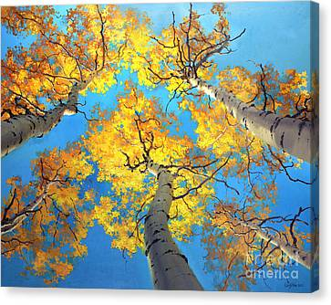 Sky High Aspen Trees Canvas Print by Gary Kim