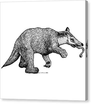 Slothbear Canvas Print by Karl Addison