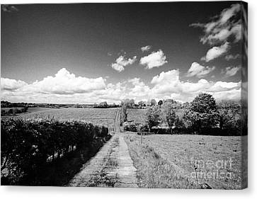 Small Worn Concrete Laneway Leading To Farmland In Rural County Monaghan At Tydavnet Republic Of Ire Canvas Print by Joe Fox