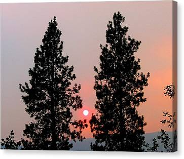 Smokey Okanagan Sunset Canvas Print by Will Borden