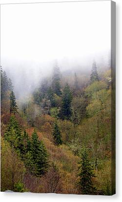 Smoky Mount Vertical Canvas Print by Marty Koch