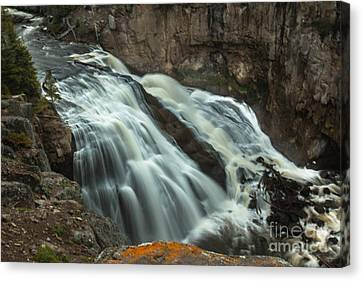 Smooth Water Of Gibbon Falls Canvas Print by Robert Bales