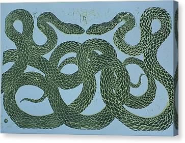 Snake Council Canvas Print by Pati Hays
