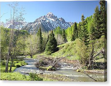 Sneffels In Springtime Canvas Print by Eric Glaser