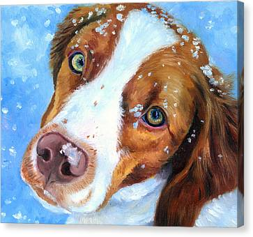 Snow Baby - Brittany Spaniel Canvas Print by Lyn Cook