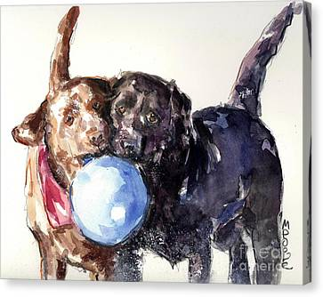 Snow Ball Canvas Print by Molly Poole