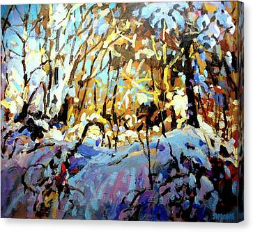 Snow Bank Canvas Print by Brian Simons