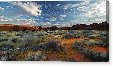 Snow Canyon Evening Glow Canvas Print by William Gillam