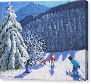 Snow Covered Trees Canvas Print by Andrew Macara