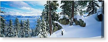 Snow Covered Trees On Mountainside Canvas Print by Panoramic Images