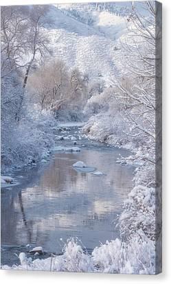 Snow Creek Canvas Print by Darren White