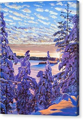 Snow Draped Pines Canvas Print by David Lloyd Glover