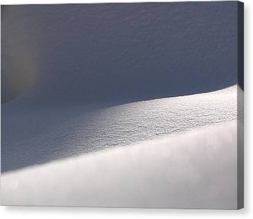 Snow Dreams Canvas Print by Juergen Roth