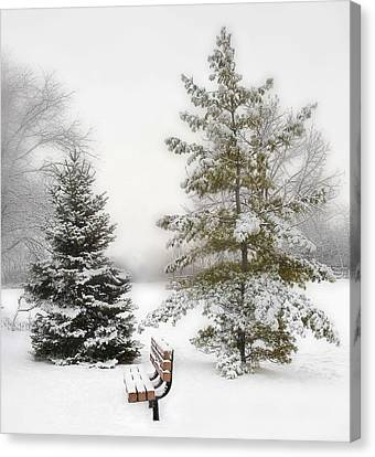 Snow In The Park Canvas Print by Liviu Leahu