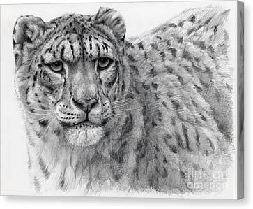 Snow Leopard Portrayal Canvas Print by Svetlana Ledneva-Schukina