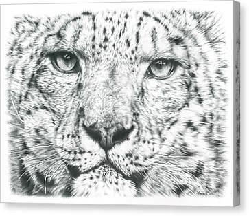 Snow Leopard  Canvas Print by Remrov Vormer