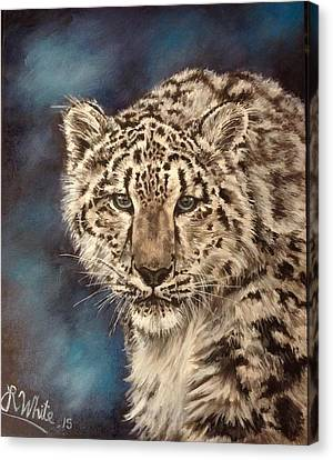 Snow Leopard Canvas Print by Art By Three Sarah Rebekah Rachel White