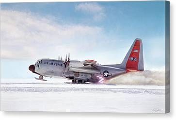 Snowbird Canvas Print by Peter Chilelli