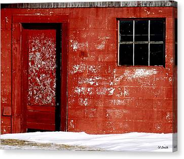 Snowed In Canvas Print by Ed Smith