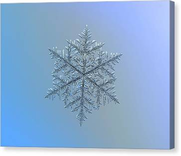 Snowflake Photo - Majestic Crystal Canvas Print by Alexey Kljatov