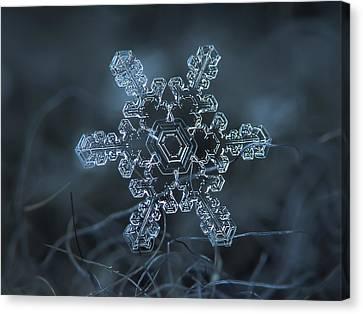 Snowflake Photo - Slight Asymmetry Canvas Print by Alexey Kljatov