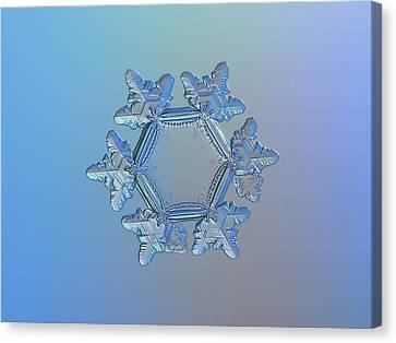 Snowflake Photo - Sunflower Canvas Print by Alexey Kljatov