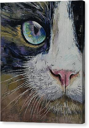 Snowshoe Cat Canvas Print by Michael Creese