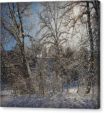 Snowy Day In The Park Canvas Print by Kathy Krause