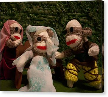 Sock Monkey Twelfth Night Canvas Print by David Jones
