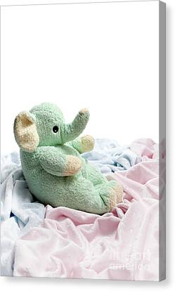 Soft And Cuddly Canvas Print by Jeannie Burleson