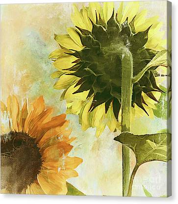 Soleil II Canvas Print by Mindy Sommers