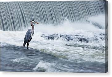 Solitude In Stormy Waters Canvas Print by Mircea Costina Photography