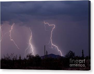 Sonoran Storm Canvas Print by James BO  Insogna