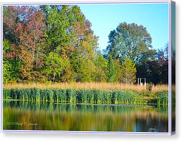 Soothing Reflections Canvas Print by Sonali Gangane