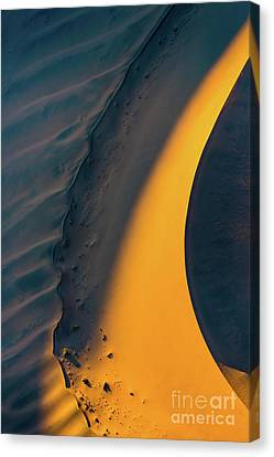 Sossusvlei Curve Canvas Print by Inge Johnsson