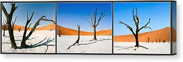 Sossusvlei National Park Canvas Print by Frida  Kaas
